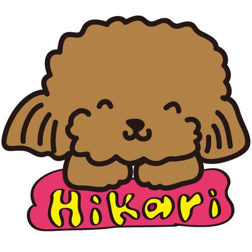 resize-hikari